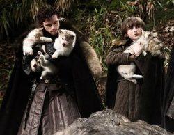 Muere Odin, el lobo huargo de Bran Stark en 'Juego de Tronos', de cáncer
