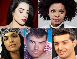 RTVE hace públicas las cinco canciones candidatas a Eurovisión 2014