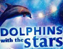 España, interesada en el formato 'Dolphins with the Stars'