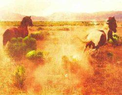 "AMC adaptará la novela western ""The Son"""