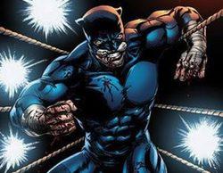"""Ted """"Wildcat"""" Grant, nuevo superhéroe que se une a 'Arrow'"""