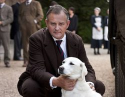 La perra Isis de 'Downton Abbey', desafortunada tocaya de una organización terrorista