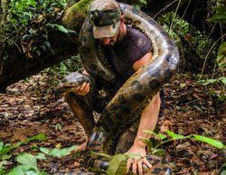 """Paul Rosolie fracasa en """"Eaten Alive"""", el reto de ser engullido por una anaconda"""