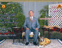 Lo absurdo de las leyes tailandesas: Un ciudadano podría ser condenado a 15 años de cárcel por criticar al perro del Rey