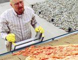 Vince Gilligan, creador de 'Breaking Bad', pide a los seguidores que dejen de tirar pizzas al tejado de Walter White