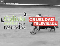 Galicia, Mellor Sen Touradas pide también la desconexión territorial de TVE durante la emisión de 'Tendido cero'