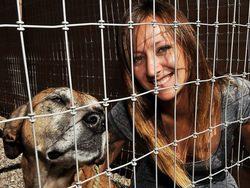 A&E estrena 'Compañeros de batalla', una serie documental sobre la ONG canina Paws and Stripes