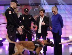 """Interior califica como """"positiva"""" la participación de Cristina Cifuentes con dos policías en 'El hormiguero'"""