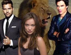 """Los televisivos indignados por el asesinato de Cecil, el león: """"Gilipollas. ¿Cómo se puede matar a un león para divertirse?"""""""