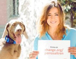 Sandra Barneda inicia una campaña para que Renfe permita viajar a perros grandes