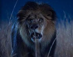 """Opiniones sobre 'Zoo': """"Me está pareciendo peor que cualquier serie española que haya visto, incluyendo Aladina"""""""