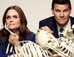 'Bones' podría cancelarse tras 11 temporadas por una demanda millonaria debida a una presunta estafa