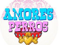 Así es 'Amores perros', el nuevo programa de Cuatro