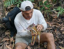 'Wild Frank en busca del dragón' (3,3%) sube en su segunda semana en Discovery MAX