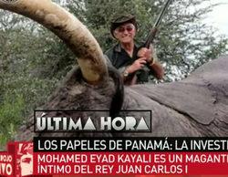 """laSexta desvela que el organizador de las cacerías del Rey Juan Carlos en Botsuana aparece en los """"Papeles de Panamá"""""""