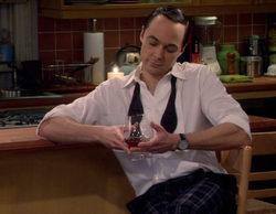 "'The Big Bang Theory' 10x08 Recap: ""The Brain Bowl Incubation"""