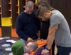 """'GH 17': Alain pone en duda la calvicie de Miguel: """"Tienes pelo, no eres calvo"""""""