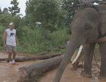 'Wild Frank, al rescate': Frank Cuesta muestra su cruzada diaria contra el tráfico de animales