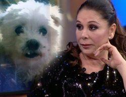 'Espejo Público' desvela el misterio de quién regaló la perra a Isabel Pantoja