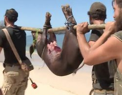 'La isla': Santi consigue cazar a un cerdo salvaje e indigna a las redes sociales