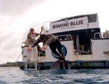 Michael Phelps, protagonista de la 'Shark Week' de Discovery Channel