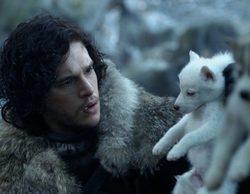 """'Juego de Tronos': La serie """"provoca"""" el aumento de adopción de huskies, pero también de abandonos"""