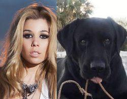 """Natalia ('Operación Triunfo') comunica que su perro ha aparecido: """"No sabéis lo felices que estamos"""""""