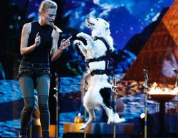 'America's Got Talent' lidera la noche y 'Bachelor in Paradise' mejora sus datos