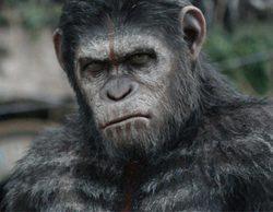 """'Salvados' vuelve con un espectacular 13,4% y """"El amanecer del planeta de los simios"""" (20,2%) es lo más visto"""