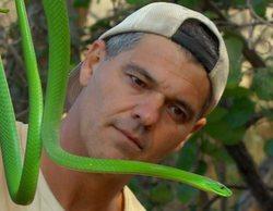 'Wild Frank': Frank Cuesta viaja hasta África para grabar con gorilas los nuevos episodios de su programa