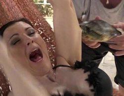 María Jesús Ruiz podría sufrir complicaciones en 'Supervivientes' debido al mordisco de la tortuga