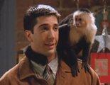 Ross Geller es el auténtico protagonista de 'Friends', según un estudio que analiza todos los guiones