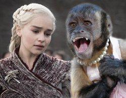 Unos monos roban a Emilia Clarke y Rose Leslie durante sus vacaciones en la India