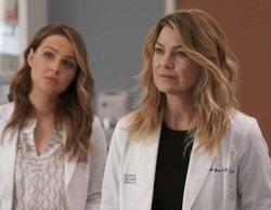 'Anatomía de Grey' tendrá un salto temporal en el inicio de la 16ª temporada