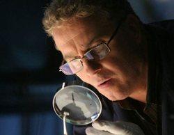 CBS planea revivir la franquicia 'CSI' con una miniserie