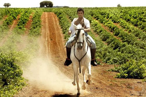Paquirri a caballo