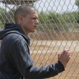 Michael Scofield en 'Orientación'