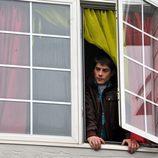 Culebra se asoma a la ventana