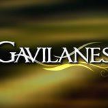 Logo de 'Gavilanes'