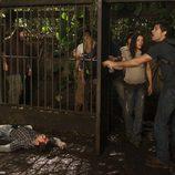 Jack saca de la jaula a sus amigos