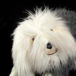 El perro Samson