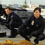 Dr. Jack Hodgins y Brennan en la sexta temporada de 'Bones'