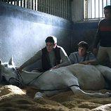 Cayetano con un caballo