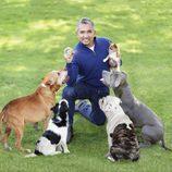 César Millán con sus perros
