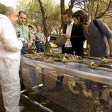 Dos cadáveres aparecerán en Punta Escarlata