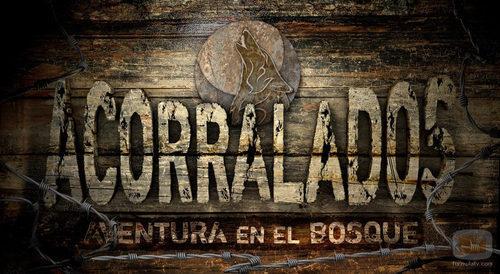 Logotipo de 'Acorralados: Aventura en el bosque'