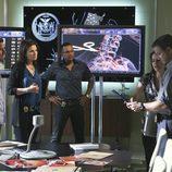 El equipo de 'CSI: NY' al completo