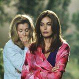 Teri Hatcher y Felicity Huffman en 'Mujeres desesperadas'
