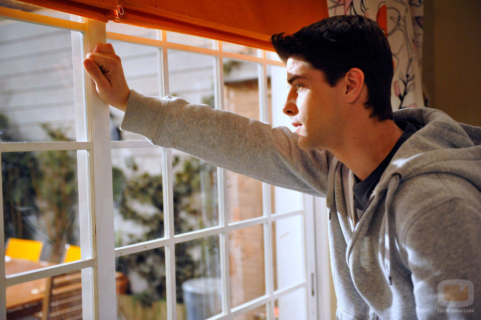 Culebra mira por la ventana