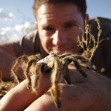 Steve Backshall muestra un arácnido letal